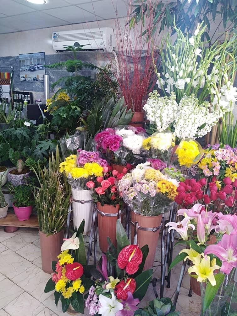 گل فروشی گل سنگ