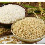 برنج فرزادی